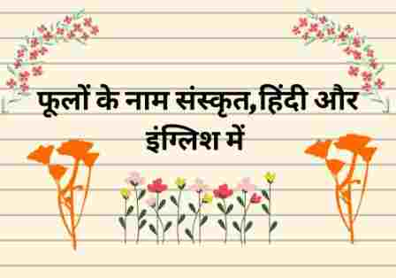 flowers name in sanskrit and hindi